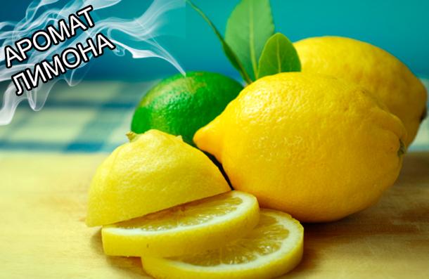 Вкусоароматические композиции на носителях, ароматизаторы пищевые для пищевой промышленности от компании ЗАО Респект - Аромат Лимона - Вкусо-ароматические добавки, декстроза, мальтодекстрин.