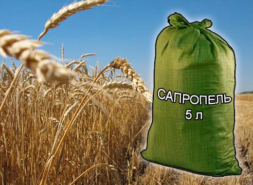 Почвогрунты, грунты и удобрения для растениеводства и садоводства от компании ЗАО Респект - Сапропель натуральный 5 л