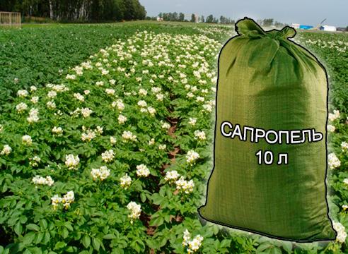 Почвогрунты, грунты и удобрения для растениеводства и садоводства от компании ЗАО Респект - Сапропель натуральный 10 л