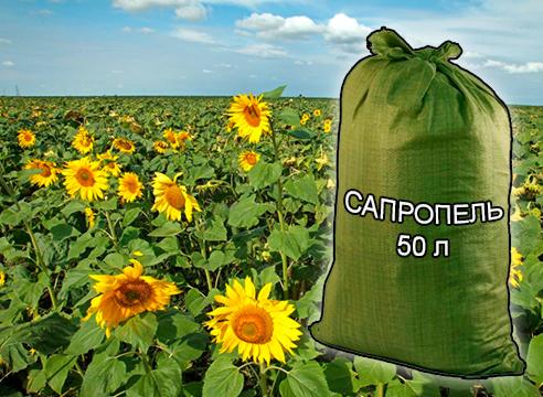 Почвогрунты, грунты и удобрения для растениеводства и садоводства от компании ЗАО Респект - Сапропель натуральный 50 л