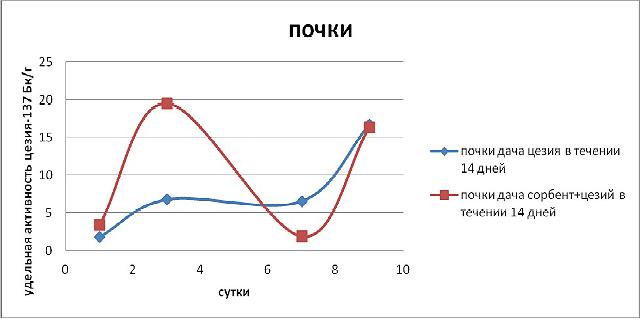 Эксперимент по применению Сорбента / адсорбента микотоксинов Сапросорб по выведению радионкулидов и радиации Цезий 137 из почек