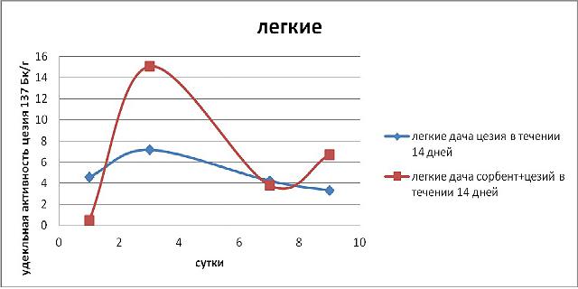 Эксперимент по применению Сорбента / адсорбента микотоксинов Сапросорб по выведению радионкулидов и радиации Цезий 137 из легких