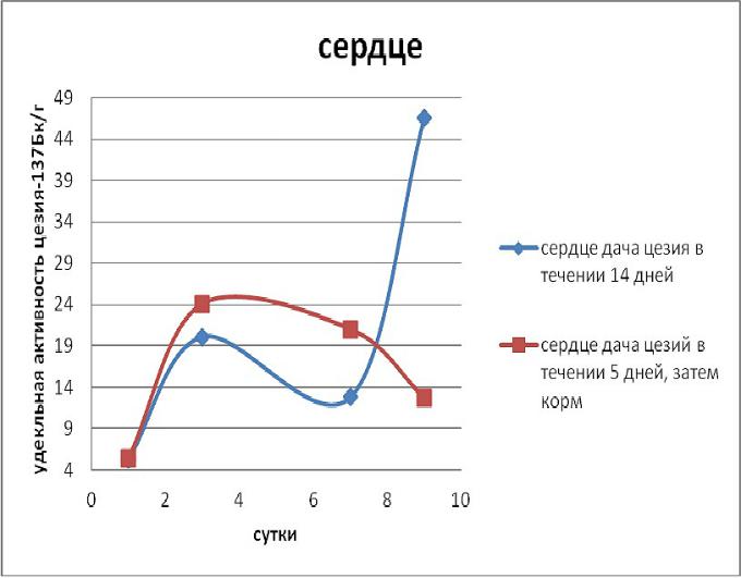 Эксперимент по применению Сорбента / адсорбента микотоксинов Сапросорб по выведению радионкулидов и радиации Цезий 137 из сердца
