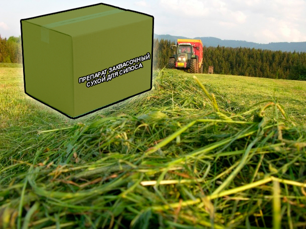 Товары для заготовки силосных кормов от компании ЗАО Респект - Препарат заквасочный сухой для силосования кормов