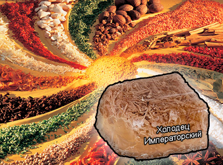 Смеси специй для мясной промышленности от компании Респект - Холодец Императорский для студней и холодцов, Смеси натуральных специй, их масел и экстрактов: черного и красного перца, лаврового листа, чеснока, гвоздики; усилители вкуса (Е-621; Е-627; Е-631)